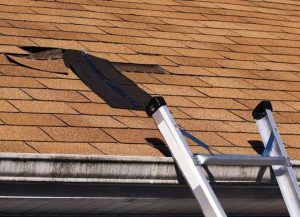 Do You Need a New Roof or Just Some Repairs?