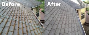 3 Reasons to Consider Roof Cleaning Willow Grove