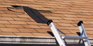 Roof Repair in Willow Grove