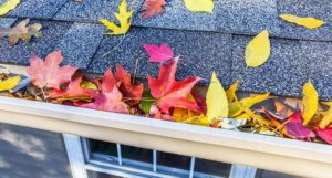 Top 5 Roof Maintenance Tips for the Fall Season